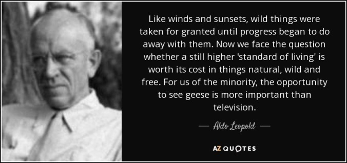 quote-like-winds-and-sunsets-wild-things-were-taken-for-granted-until-progress-began-to-do-aldo-leopold-45-57-98